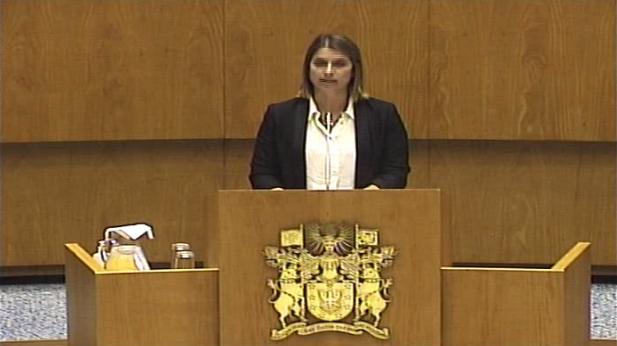 Intervenção final da Deputada Catarina Cabeceiras do CDS-PP - Programa do XIII Governo da Região Autónoma dos Açores